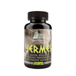 Hermes 120 Kapsúl